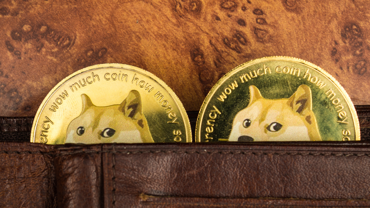 Elon Musk Says 'Important to Support' Dogecoin Fee Change Proposal